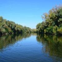 Река Уфимка :: Наталья Тагирова