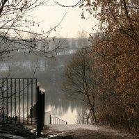 К реке... :: Алексей Дмитриев
