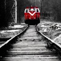 Красный в Черно-Белом :: Сергей Погарельский