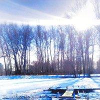 зимние просторы :: Александра Иваненко