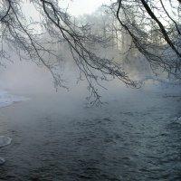 Разметал туман седые косы по ложбинам у реки... :: Людмила Алексеева