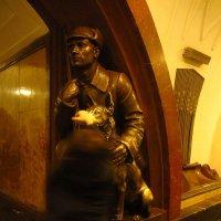Самая обласканная собака в мире :: Андрей Лукьянов