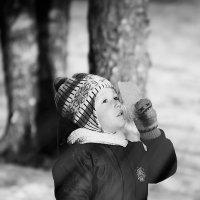 весенние лучики света :: Олька Никулочкина