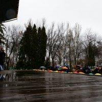 Праздник в любую погоду :: Юрий Новичков