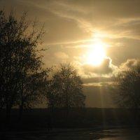свет заходящего солнца :: elena manas