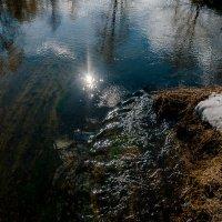 Март. Солнце в талой воде. :: Алексей Сапожков