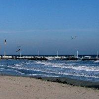 весенне - пляжный пейзаж без прикрас... :: Людмила