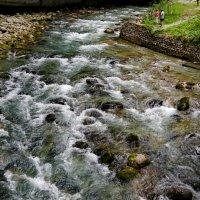 Река Юпшара :: Светлана