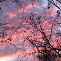 А в это время в небесах... (01.11.2014) :: Наталья Кочетова