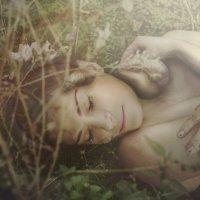 Умиротворение :: Мария Буданова