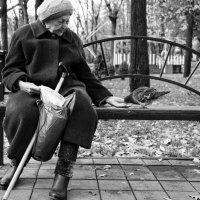 Сострадание :: Андрей Майоров