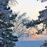 Зимний вечер :: Сергей Чиняев