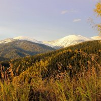 Сентябрь пришёл со снегом :: Сергей Чиняев