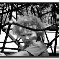 В путах ... :: Leonid Korenfeld