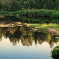 Тихая речка :: Валерий Талашов