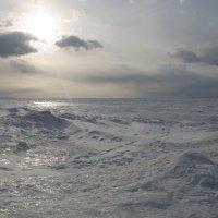 Снежная пустыня. Байкал. :: Renata Bogatova
