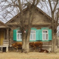 Селяне и селянки у дома своего... :: M Marikfoto