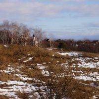 Весна :: павел Труханов