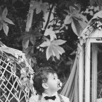 Крещение маленького принца :: Damianos Maximov