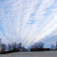 Вспаханное небо, восток. :: Нина