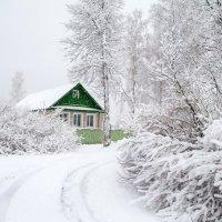 ...Мартовский снегопад :: Владимир Рязанов