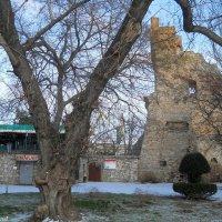 Башня :: Виктор Шандыбин