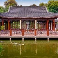 В японском саду :: Ростислав Бычков