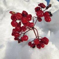 Ягоды в снегу :: Люба Битюгина
