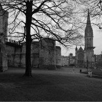 Средневековый замок-крепость в г.Кан, Нормандия. Дождь. :: Lmark