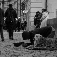 Б - безразличие. :: Андрей Володин