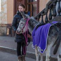 Девушка с осликом :: Игорь Вишняков