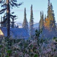 Утренний заморозок :: Сергей Чиняев