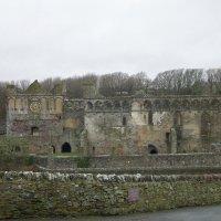 Руины Дворца Епископа :: Natalia Harries
