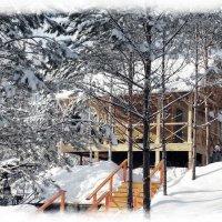 Красиво в Сибири :: Владимир Звягин