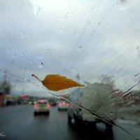 Скорость и дождь :: °•●Елена●•° Аникина♀
