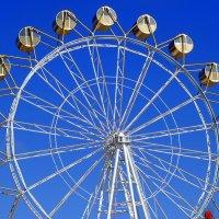 Золотые кареты  на чёртовом колесе. :: Мила Бовкун