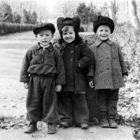 1959 :: nikolas lang