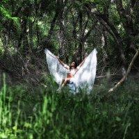 Птица :: Наталья Малина
