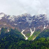 Горы Абхазии :: Ирина Богатырёва