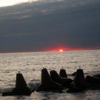уходящее за горизонт солнце :: elena manas