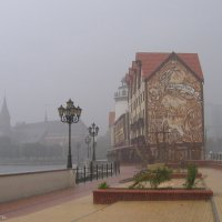 Дождь.. :: Elena N