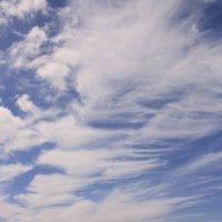 Балтийский ветер рисует облаками.. :: Elena N