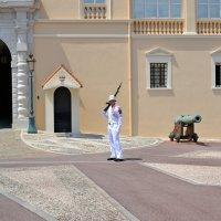 Охрана княжеского дворца :: Ольга