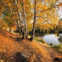 Осень :: Мария Кухта
