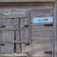 КИМ :: Надежда Кунилова