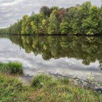 Берег реки Дубна :: Артем Алексеев