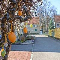 В ожидании пасхи  -   Osterbaum – ветка или деревце, украшенное цветными яйцами. :: Galina Dzubina