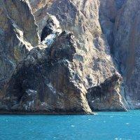 Карадаг, Крым :: Марина