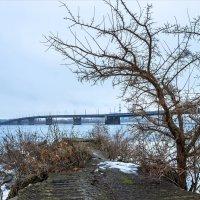 Холодным пасмурным январем :: Denis Aksenov