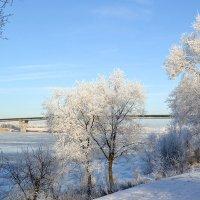 зима на Волге :: valera